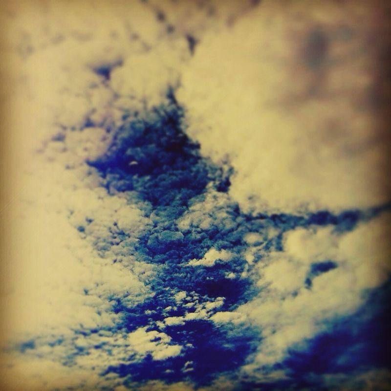 Sky bowl 11