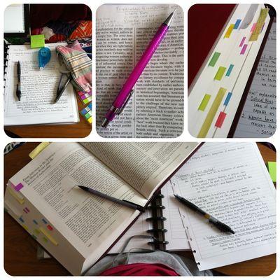 Study system 2