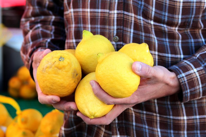 Organic lemons from farmers market